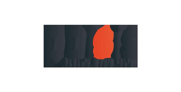pulsismedia_logo